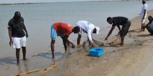 Pêche expérimentale dans la Baie de Saint Jean