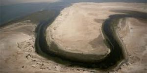 Appui scientifique à la gestion de la baie de l'Étoile – Rapport des travaux de l'IMROP en 2011