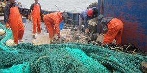 Rapport du premier Groupe de Travail sur la Description et l'évaluation des ressources halieutiques de la ZEE mauritanienne